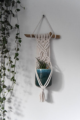 Mini flower, plant hanger