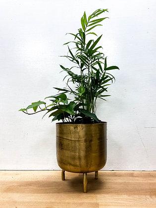 Metal Gold pot, medium