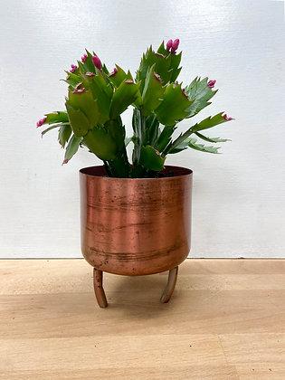 Metal Copper , Small
