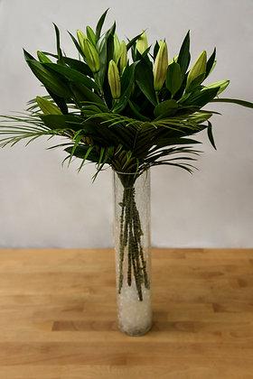 Oriental Lillys