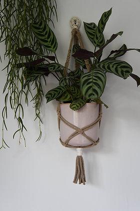 Brown twist, plant hanger