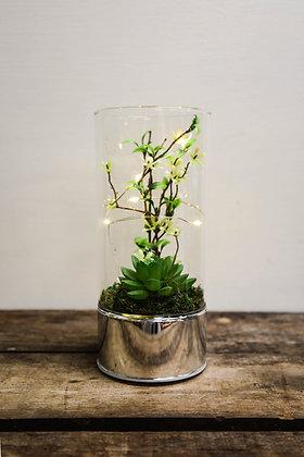 Tall succulent light decor