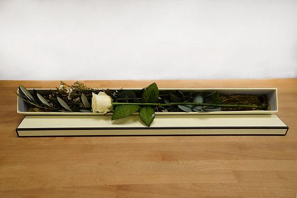 Single Avalanche white rose