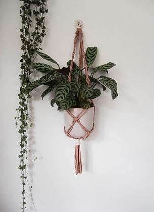 Pink & cream twist, plant hanger