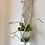 Thumbnail: Elegant wave, plant hanger
