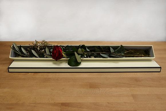 Single Naomi red rose