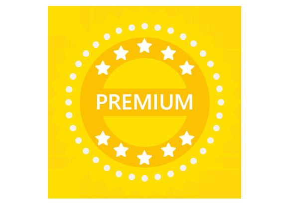 Interview Pro+ Premium Course