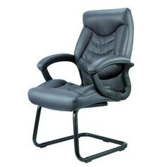 כסא אורח טורנטו.jpg