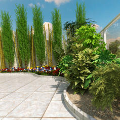 פרויקט הדמיה תכנון-עיצוב-הקמת בדניה חיפה