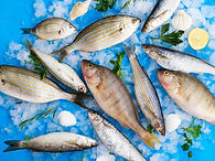 top-view-mix-fresh-fishes-ice-cubes.jpg