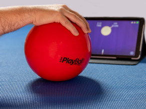 Games for Physical Therapy: From Fun to Functional