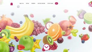 E&Y Fruits - מגשי פירות
