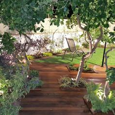 פרויקט תכנון-עיצוב-הקמת גינה ארצישראלית בקרית חיים