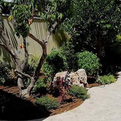 פרויקט סביון 1.jpg פרויקט תכנון-עיצוב-הקמת גינה בבית פרטי בסביון