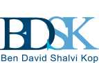 Ben David Shalvi Kop | CPA office