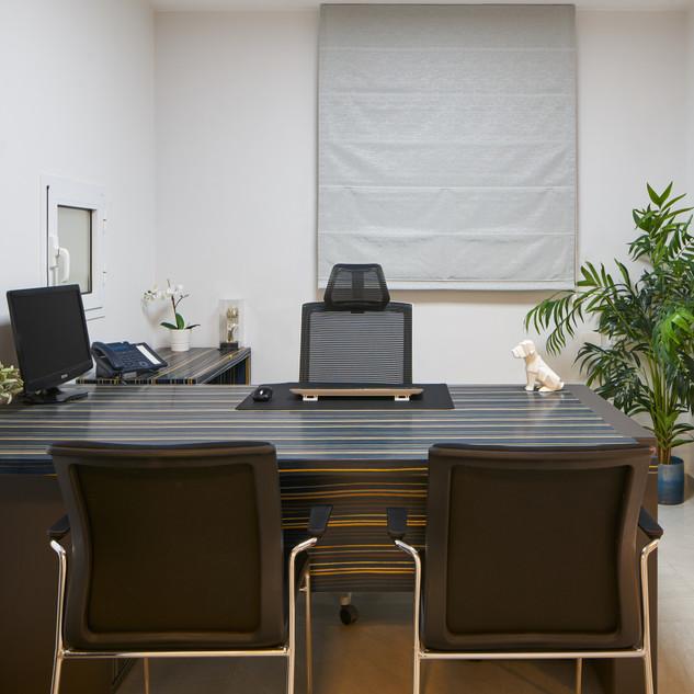 Dorit Shany Jerusalem Office 4.jpg
