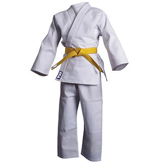 Martial Arts Uniform, Bjj Gi, Karate uniform
