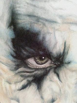 The Joker's Eye