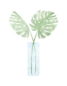 Monstera Leaf, Heartthrob Studio