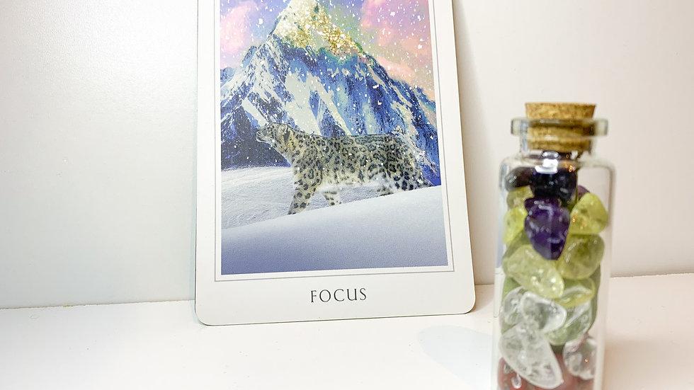 Intention Bottle - Focus