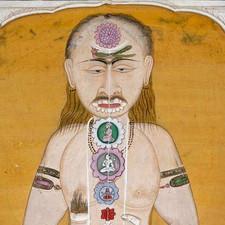 Pranayama - A saúde através da respiração.