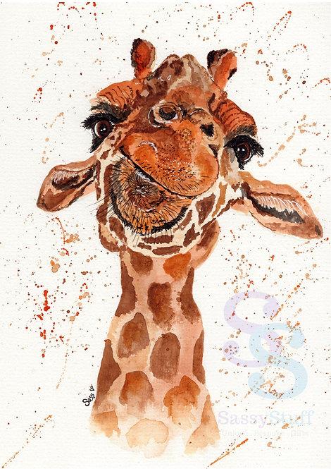 Baby Giraffe A4 Print