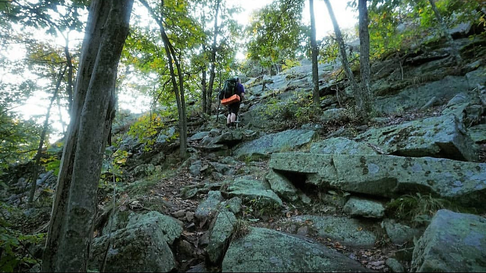 At Section Bear Mountain And Harriman