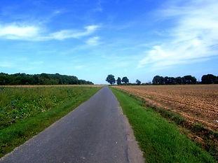 Fontainebleau Bike Tour