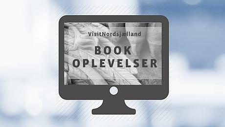 BOOK OPLEVELSER.png