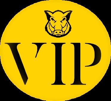 ADP Fantasy VIP Pass
