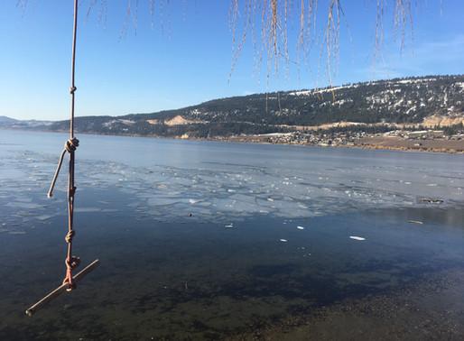 Frozen in February