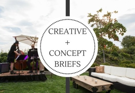 Creative and Concept Briefs
