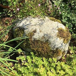 Stones (3).jpg