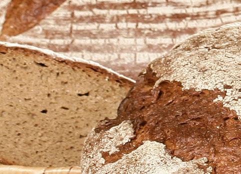 REX BAVAROIS IREKS (για ψωμί με σίκαλη)
