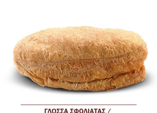 ΓΛΩΣΣΑ ΣΦΟΛΙΑΤΑΣ KONROL