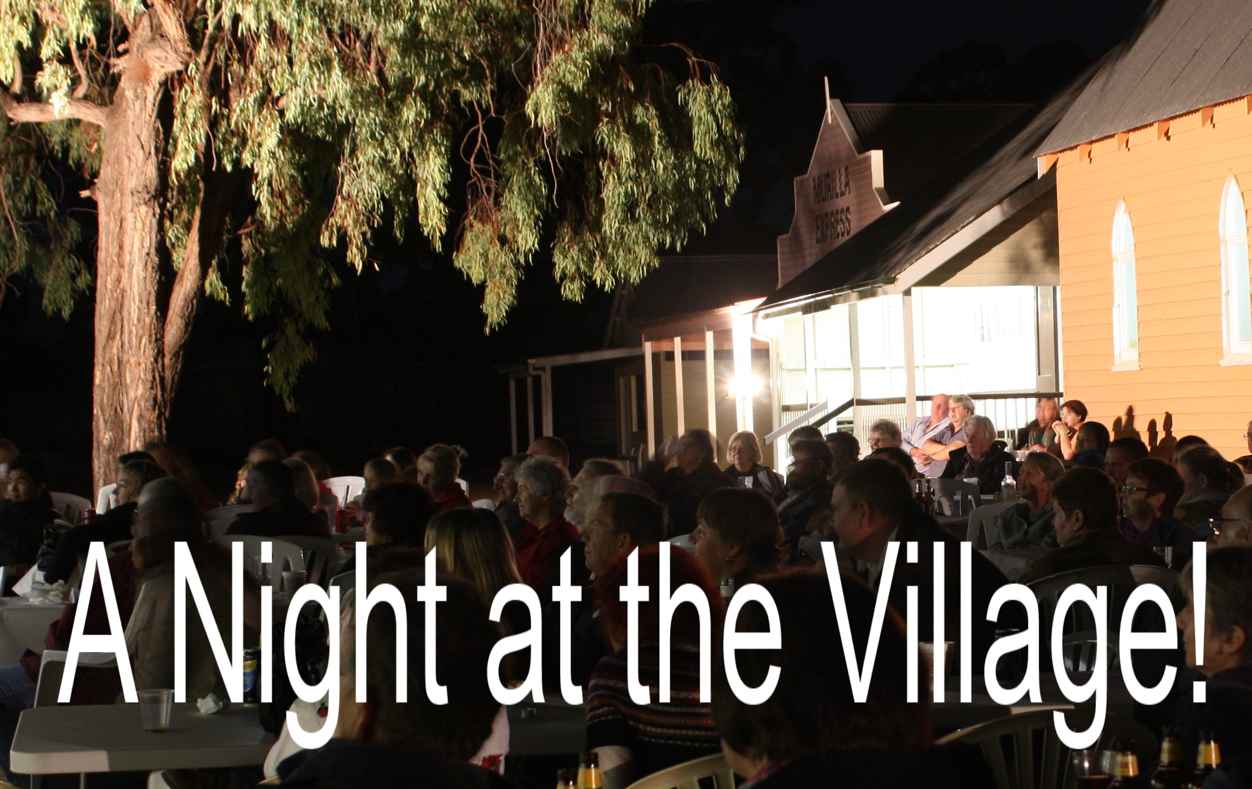 Miles RegionalA Night at the Village