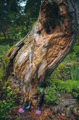 treeshoe1.jpg