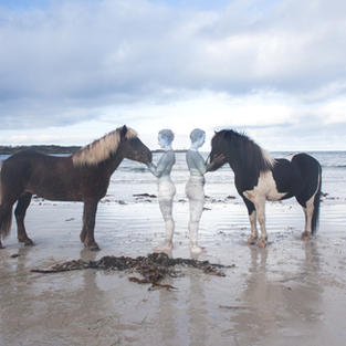 """""""Horses by the North Sea"""""""