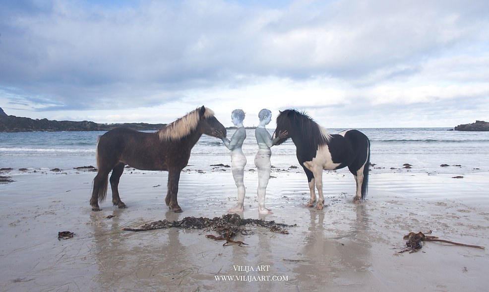 VilijaVitkute 2018 Lofoten :Photography