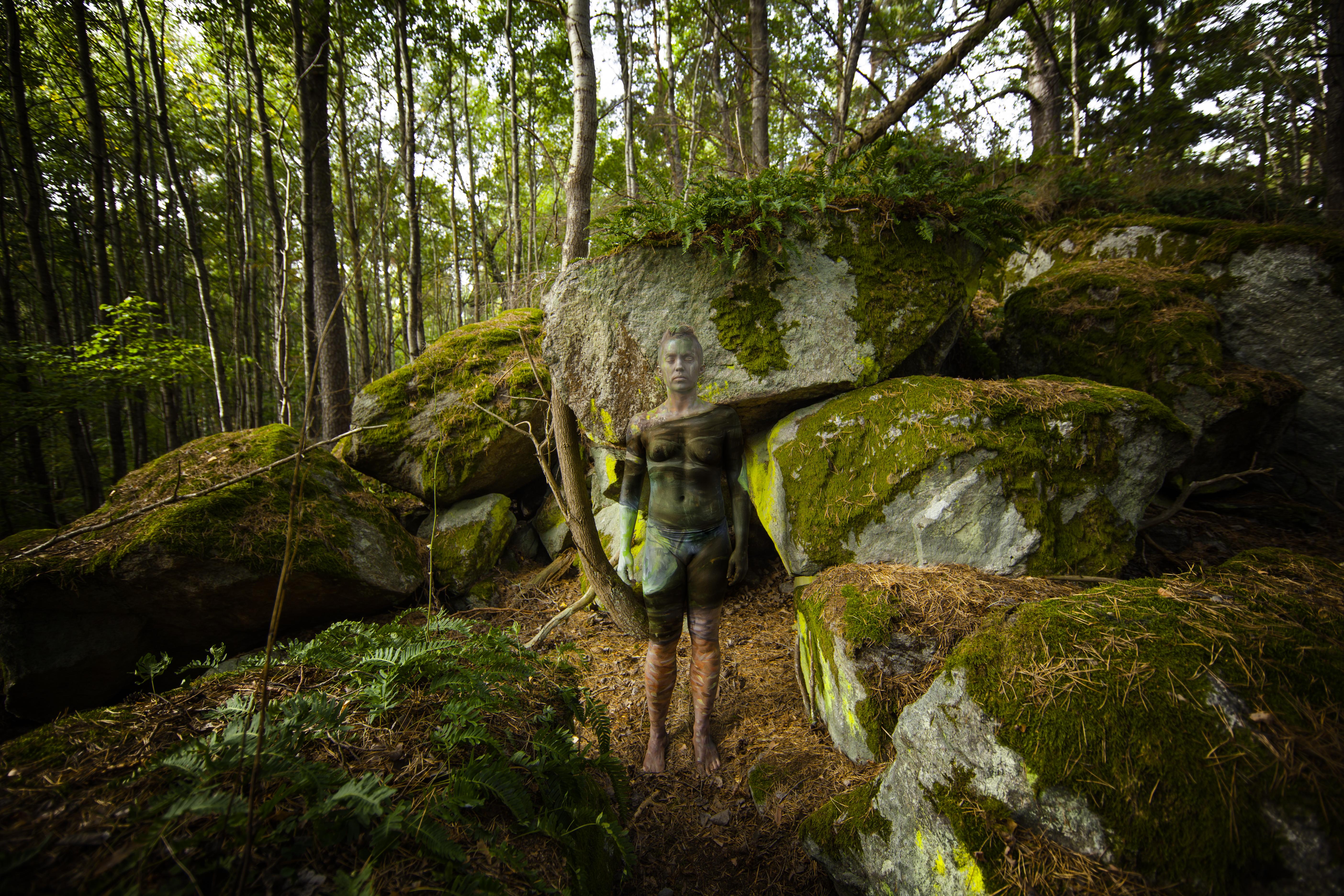 stonesforest