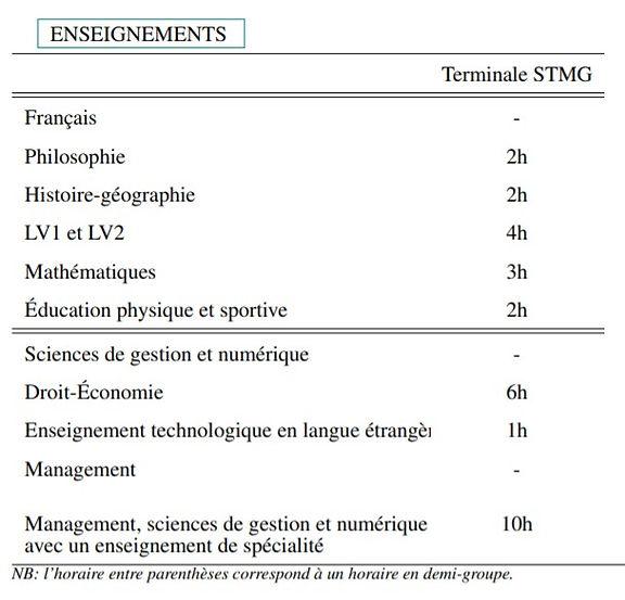 STMG 3.jpg
