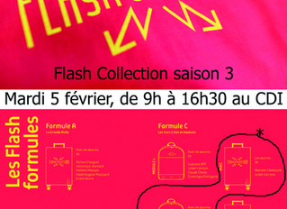 EXPO CDI : Flash Collection ce mardi 5 février