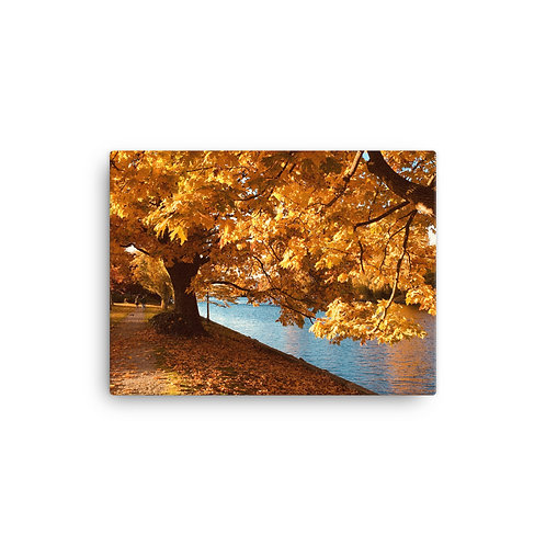 Autumn Scene Canvas
