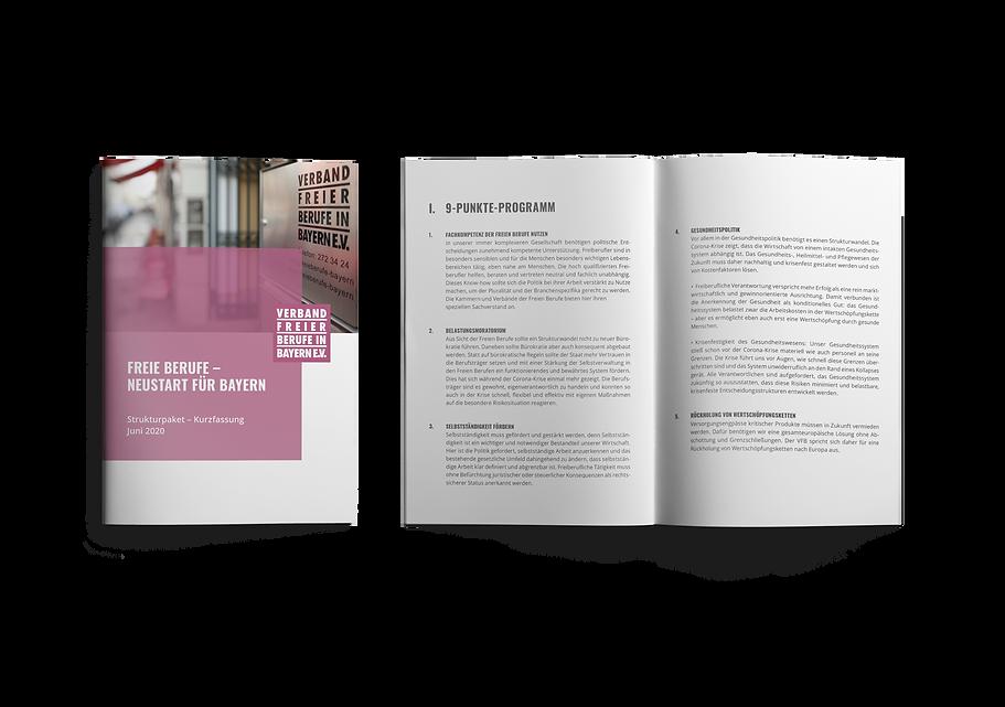 Verband Freier Berufe in Bayern | Strukturpaket Broschüre