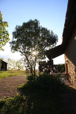 Outside Farm