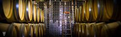 Cellar at Domaine de Grand Mayne