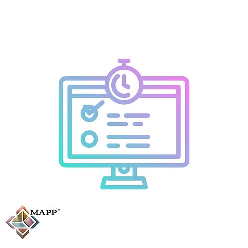 MAPP Executive Assessment & Feedback