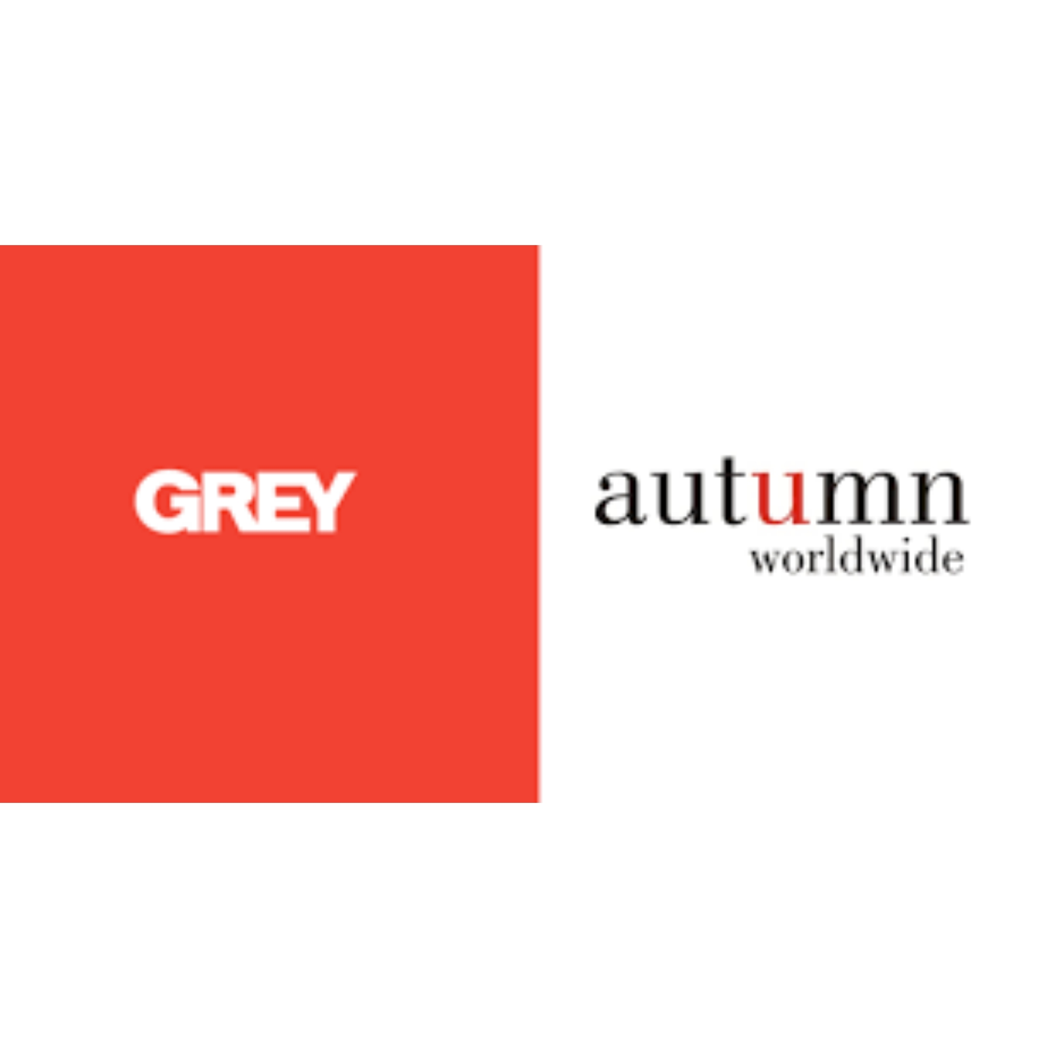 Grey Autumn Woldwide