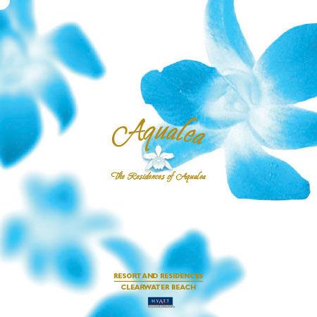 ntz_studios_hyatt_aqualea_brochure.jpg