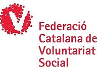 logo voluntariat.jpg